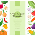 fresh organic vegetables - modern colorful vector image vector image