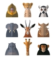 icons african animals3 vector image vector image