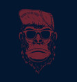 monkey in baseball cap and sunglasses design vector image vector image