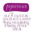 script cyrillic font vector image