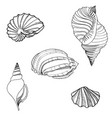 seashell sea star set summer holiday marine vector image vector image