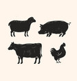 set of animals for the butcher shop cow pig vector image vector image