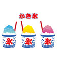 shaved ice 1 vector image vector image