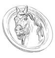 stone head horse vector image