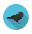 flat icon Raven vector image