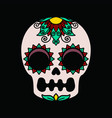 color patterns on a white skull vector image