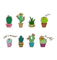 colored cactus in pot colorful succulents vector image vector image