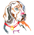 colorful decorative portrait beagle vector image vector image