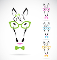 Horse glasses vector image