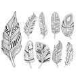 ornamental feathers in handdrawn style vector image