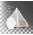 pyramid shape tea bag mock up with empty white vector image vector image