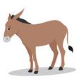 sad donkey on white background vector image vector image
