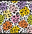 seamless pastel leopard pattern design vector image vector image