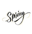 spring handwritten lettering beautiful modern vector image