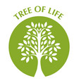 tree life vector image