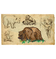 Animals theme BEARS - hand drawn pack vector image