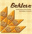Baklava 6 vector image vector image