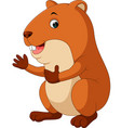 cute hamster waving hand vector image