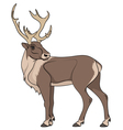deer isolated object vector image vector image