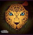 jaguar tropical bird icon vector image vector image