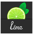 Just of lime vector image vector image