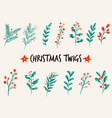 set christmas twigs branches plants vector image