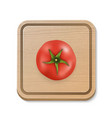 3d realistic juicy tomato on a square vector image vector image