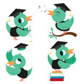 birds with graduation hats and gowns vector image vector image