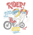 cute bear and his brother on motorcycle t-shirt vector image vector image