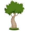 fancy tree vector image vector image
