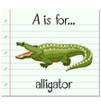 Flashcard letter A is for alligator vector image