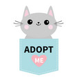 adopt me dont buy cat in blue pocket pet adoption vector image vector image