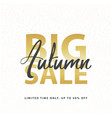 big autumn sale gold sign in white golden glitter vector image