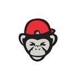 chimpanzee head baseball cap retro vector image vector image