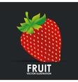 fruit icon vector image vector image