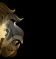 goldilocks vector image