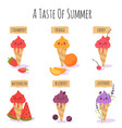 ice cream collection summer fruit flavor vector image