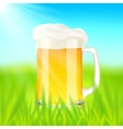 Mug with beer on green field in sunny day vector image