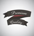 premium design vector image