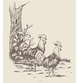 rooster hen and chicken at the farm vector image vector image