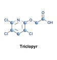 triclopyr trichloropyridinyloxyacetic acid vector image
