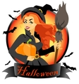 Witch with pumpkin and broomstick vector image