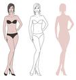 Women figure vector image vector image