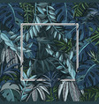 background with jungle foliage and white frame vector image