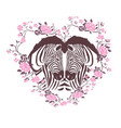 cute zebra i love you forever card vector image