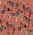 graphic seamless pattern standing zebras drawn vector image