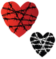 Heart in barbed wire vector image vector image
