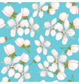 Seamless pattern with cherry blossoms vector | Price: 1 Credit (USD $1)