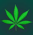 cannabis marijuana realistic vector image