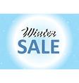 Winter Sale background vector image